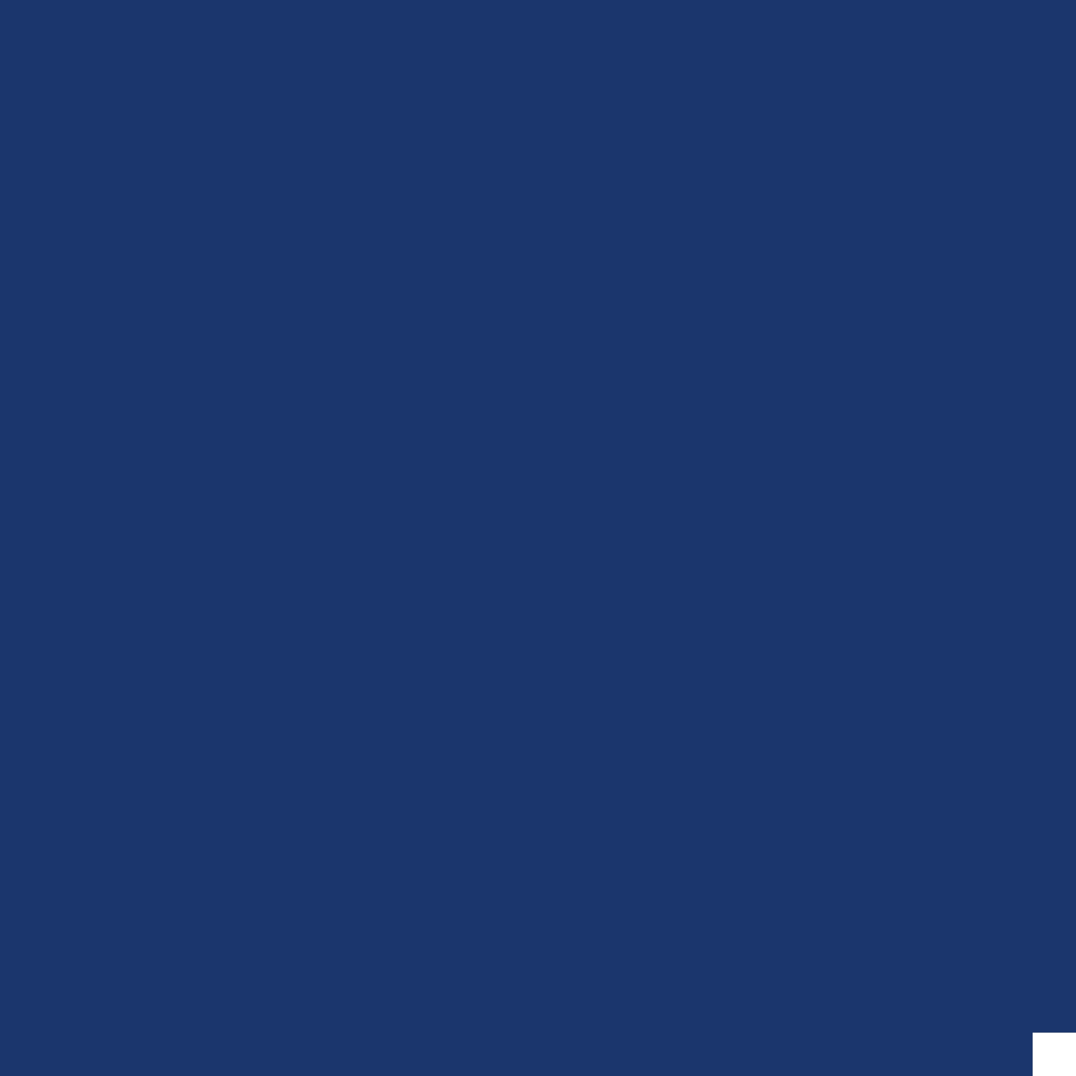 Fair-Premium-Icon